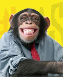 alessia marcuzzi francesco facchinetti la scimmia