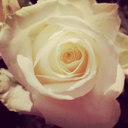 fiori-matrimonio-belen