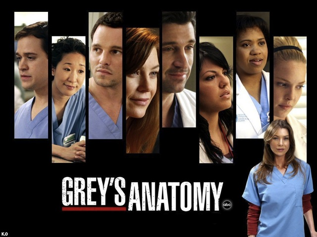 grays-anatomy-10