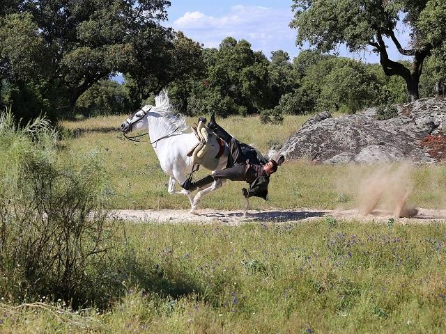 una vita pablo cade da cavallo