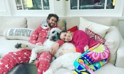 liam hemsworth miley cyrus matrimonio