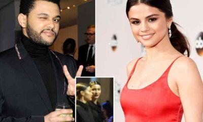 Selena Gomez The Weeknd Bella Hadid