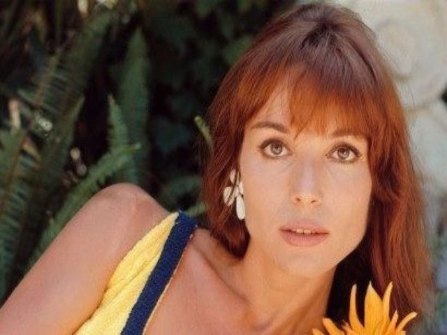 Elsa Martinelli è morta, lutto nel mondo del cinema italiano