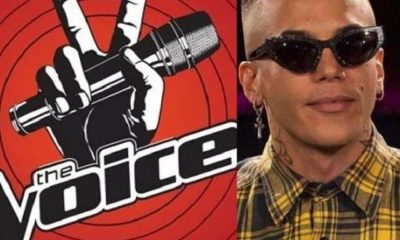 the voice microfono