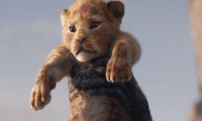 il re leone, quando esce al cinema