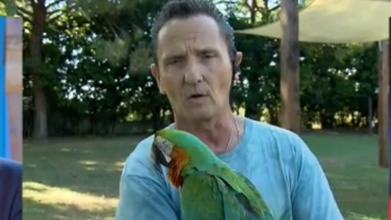 enzo salvi e pappagallo fly