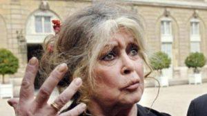 """Brigitte Bardot: """"Covid? Cosa buona, sovrappopolazione regolamentata"""""""