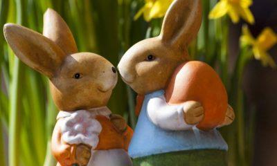 immagine di pasqua, coniglietti
